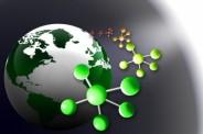 Biologia 2011 poziom podstawowy (Fot.freedigitalphotos.net)