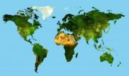 Matura 2007 - geografia podstawowa - odpowiedzi  (Fot.freedigitalphotos.net)