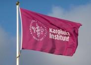 Karolinska Institutet (Fot.Holger.Ellgaard, wikipedia.org)