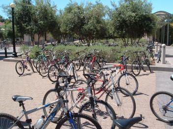Stanford, życie studenckie (Fot.Plax1, wikipedia.org)