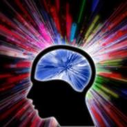 Działanie mózgu (Fot.freedigitalphotos.net)