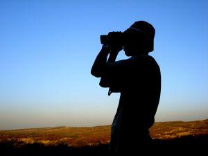 odkrywanie i poznawanie świata (fot.freeimages.com)