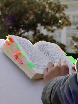 czytanie książki (fot.freeimges.com)